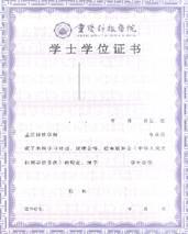 重庆科技学院学士学位证书
